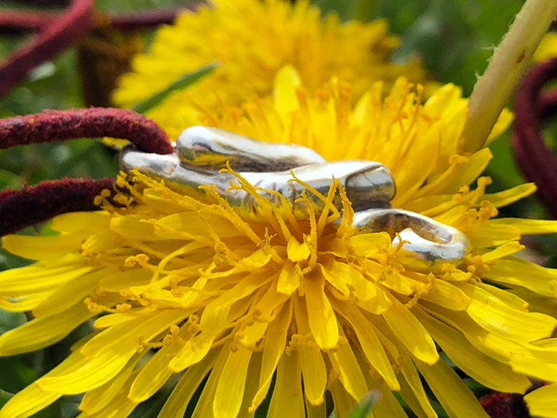 Pulsera del hilo rojo del destino sobre una flor