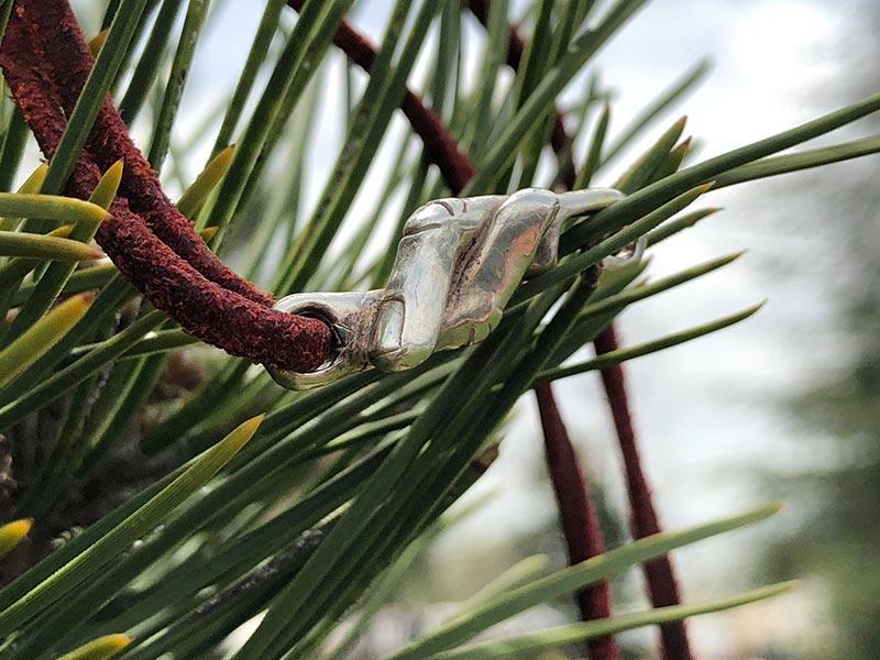 Pulsera del hilo rojo del destino sobre un pino